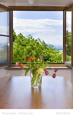 ratgeberartikel kunststofffenster oder holzfenster der vergleich. Black Bedroom Furniture Sets. Home Design Ideas
